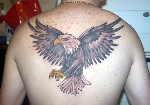Le Tatouage Aigle